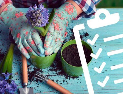 Gartenarbeiten: Checkliste Frühling