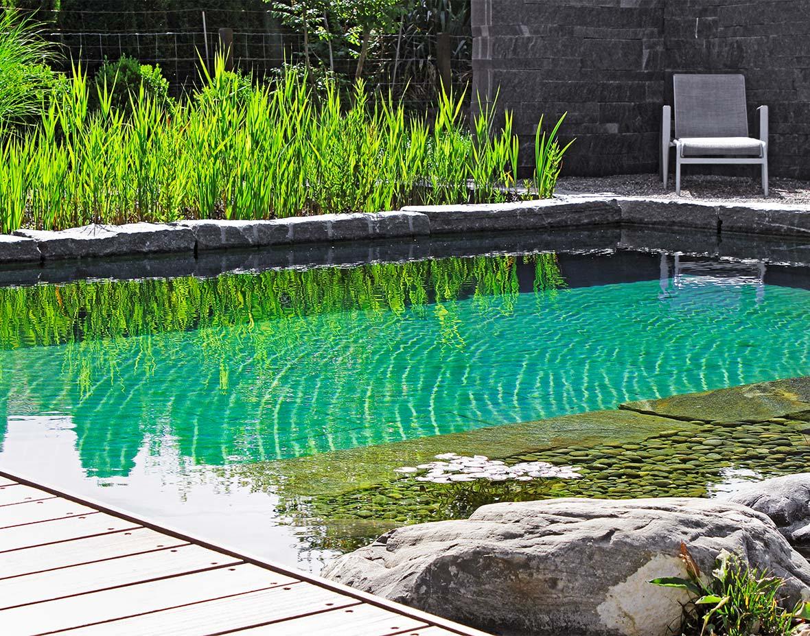 schwimmteich bilder hierner gmbh schwimmteich 28 wundersch ne schwimmteich bilder. Black Bedroom Furniture Sets. Home Design Ideas
