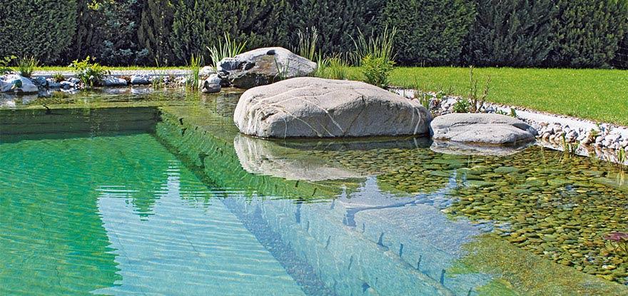 schwimmteich unterhalt und pflege f r badeteiche pools und becken. Black Bedroom Furniture Sets. Home Design Ideas