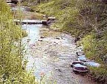 Naturnaher Wasserbau am Bachbett