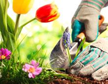 Unterhaltsarbeiten im Frühling