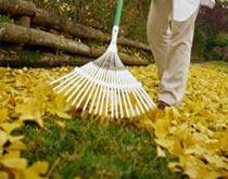 Unterhaltsarbeiten im Herbst