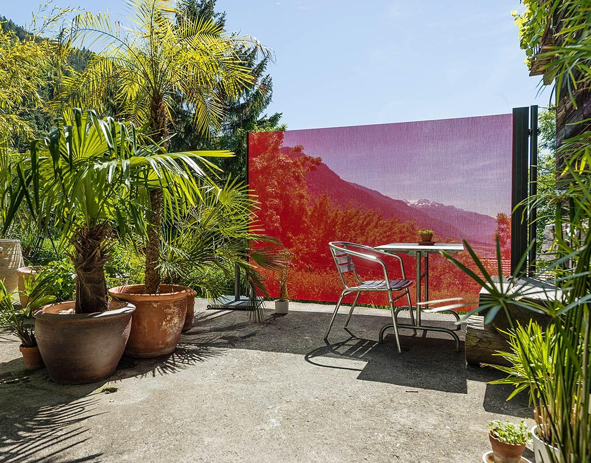 Sichtschutz und Windschutz Palmen